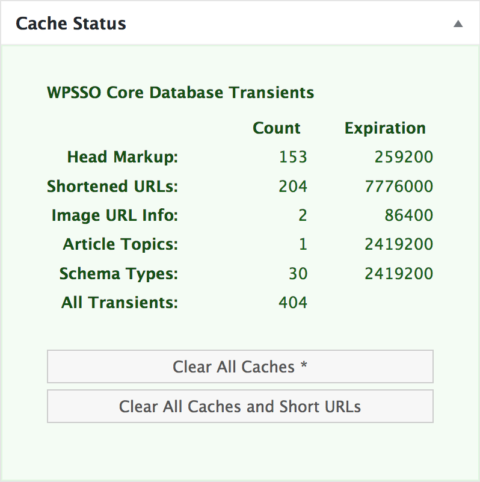 The Cache Status metabox added in WPSSO Core v3.48.0